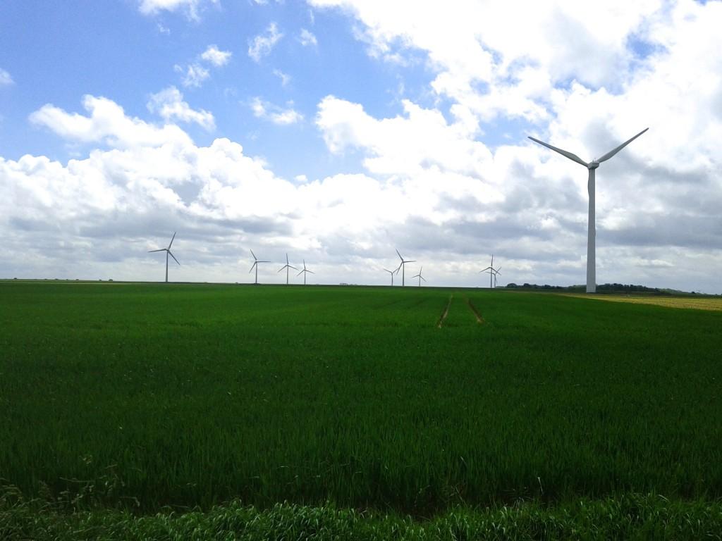 Champs d'éolienne