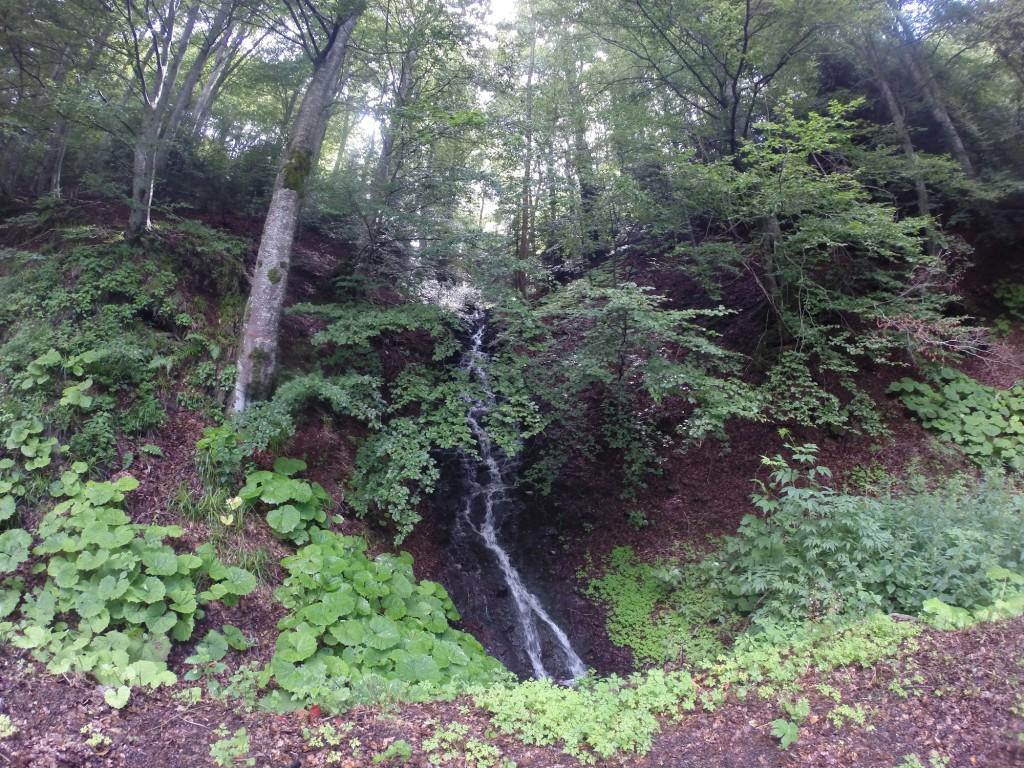 Etape 8: mini cascade