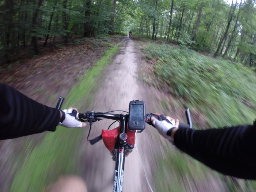Traversée de Fontainebleau par les chemins